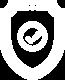 Shield Protective Icon
